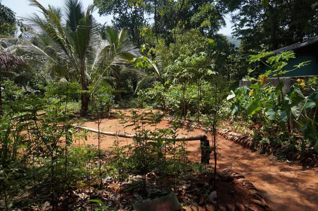 jardins d'épices sri lanka