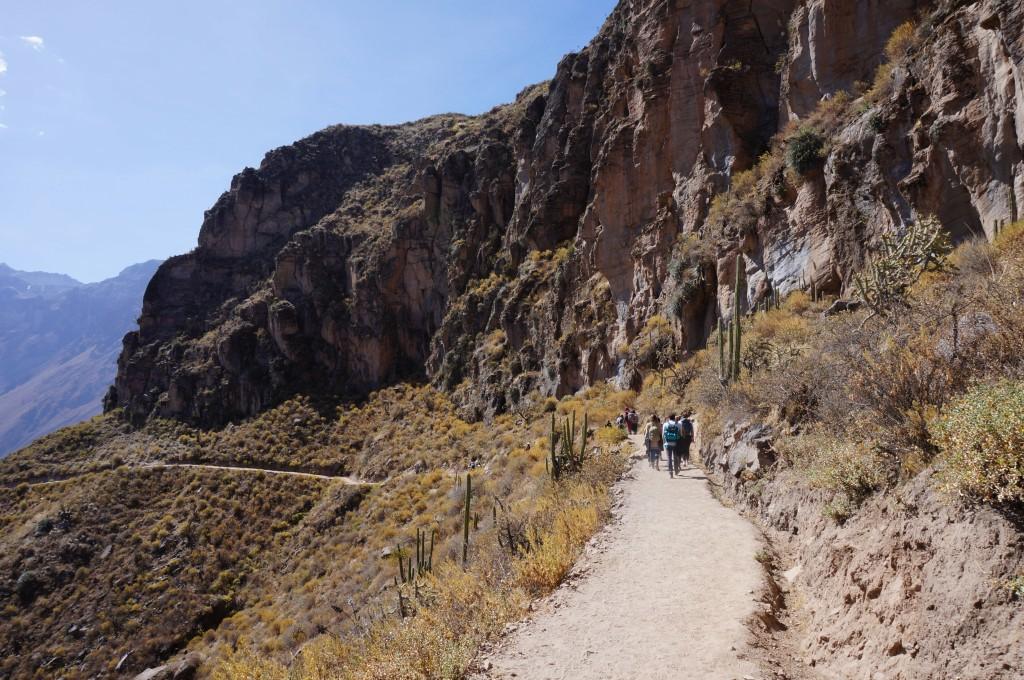 Trek Canyon del colca