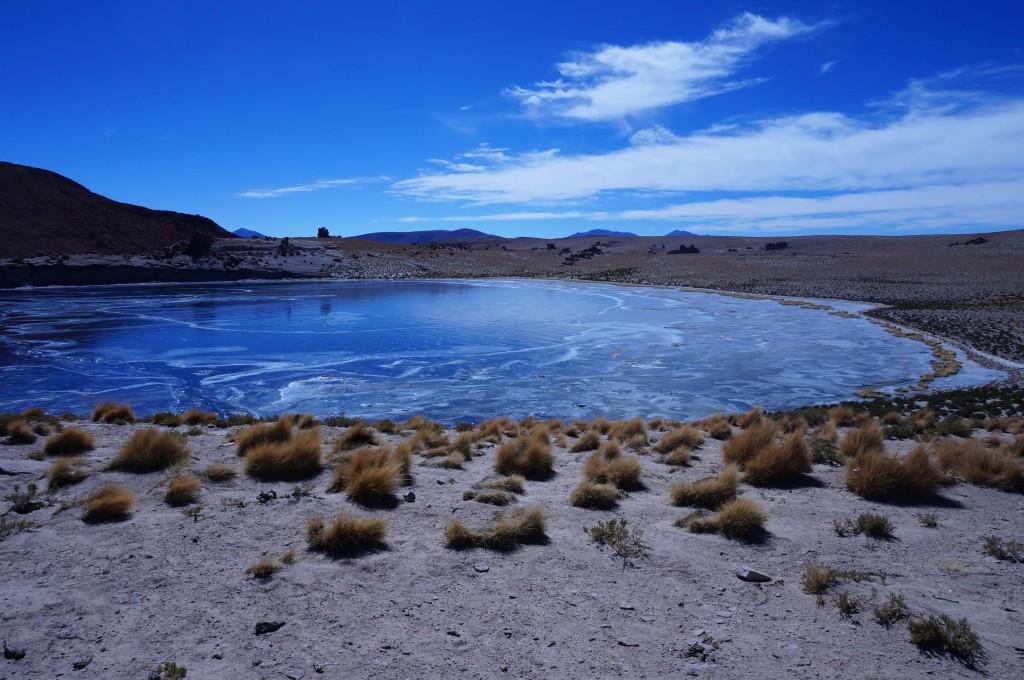 Sud Lipez - lagune