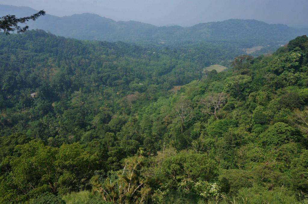 Région de Kandy