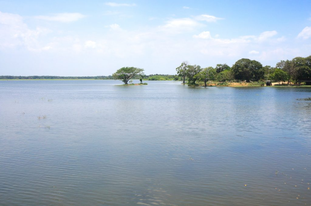 lac Tissa Wewa sri lanka yala