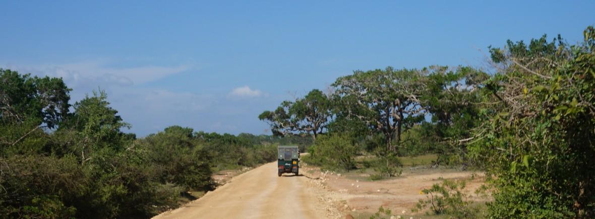 safari parc de yala