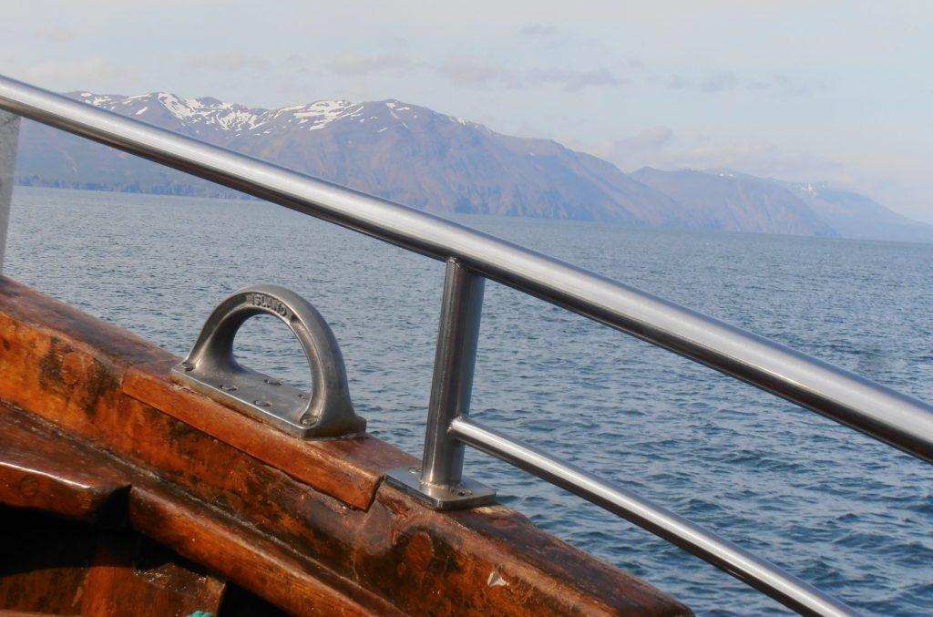baleines islande Husavik