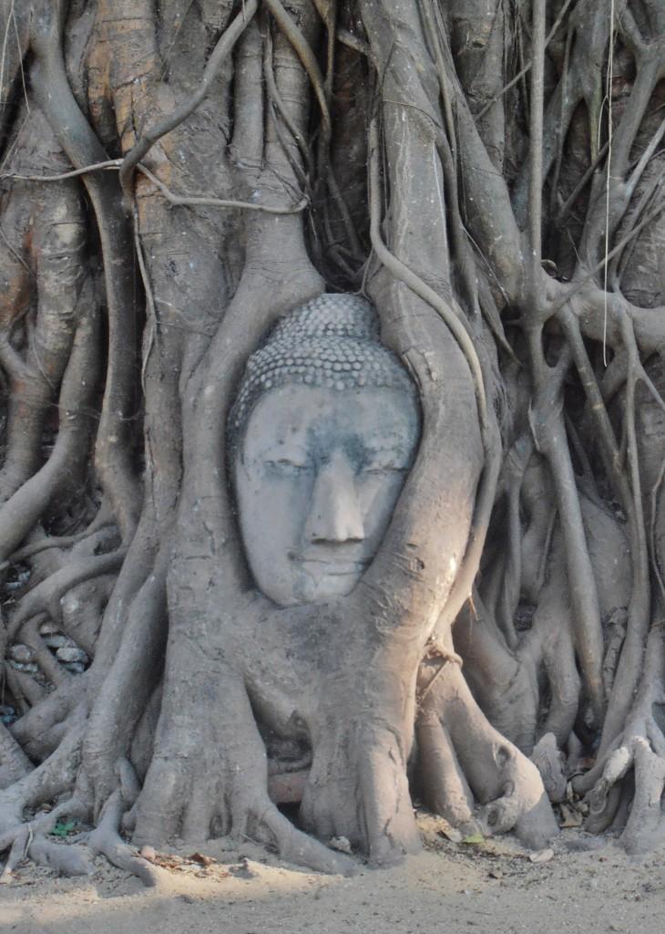 Ayutthaya (Wat Mahathat)
