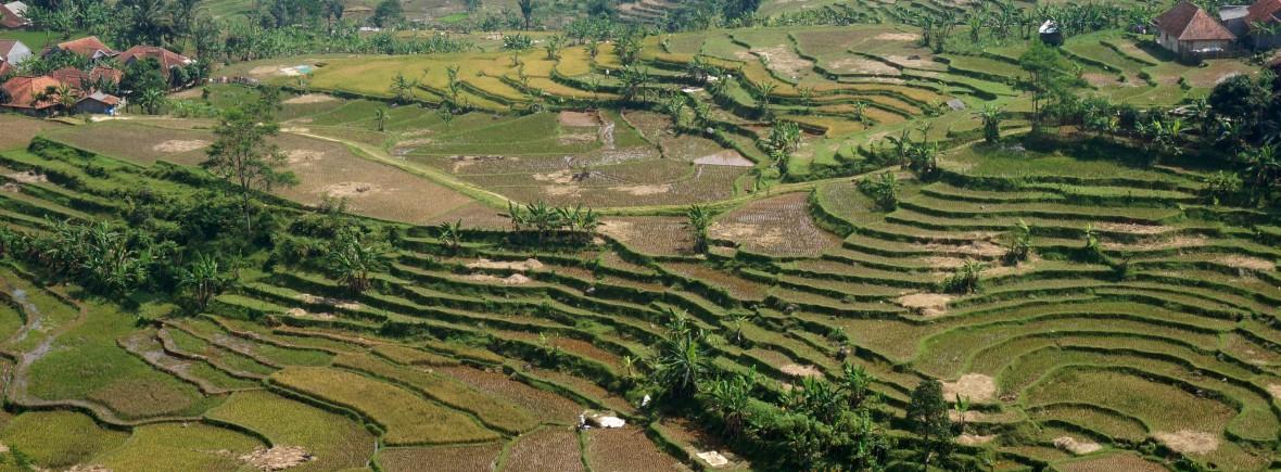 Bogor Java Indonésie