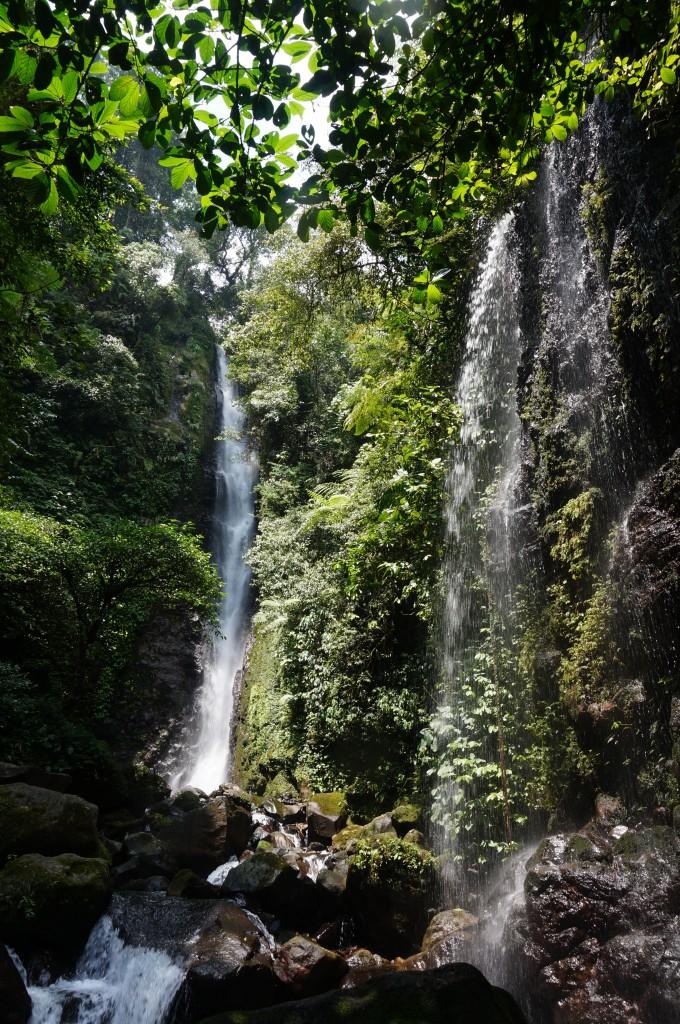 Cascade bogor java