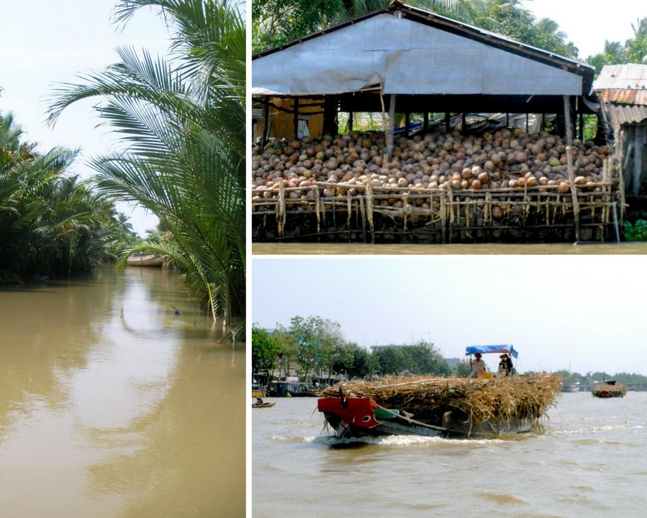 Delta du Mekong vietnam noix de coco
