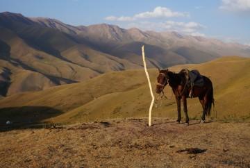 Trek a cheval