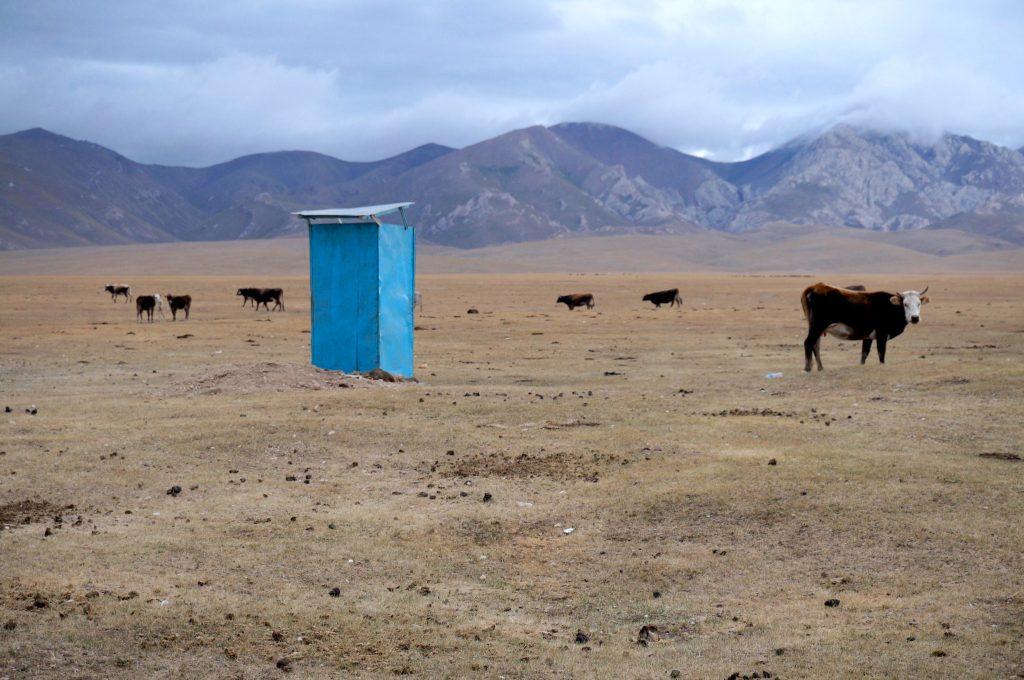 kirghizistan asie centrale Lac song kol