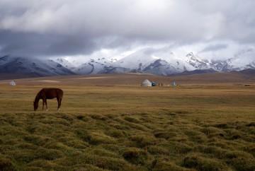 lac Song Köl kirghizistan
