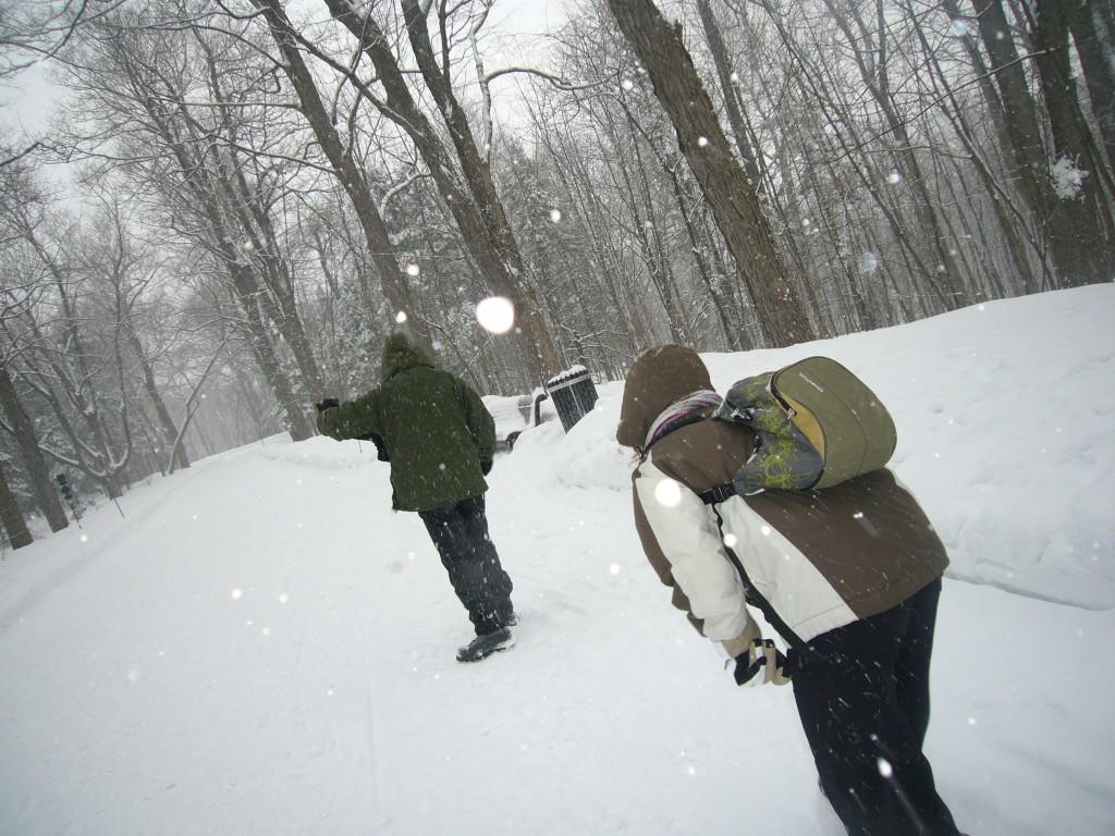 Mont Royal bataille de neige Montréal