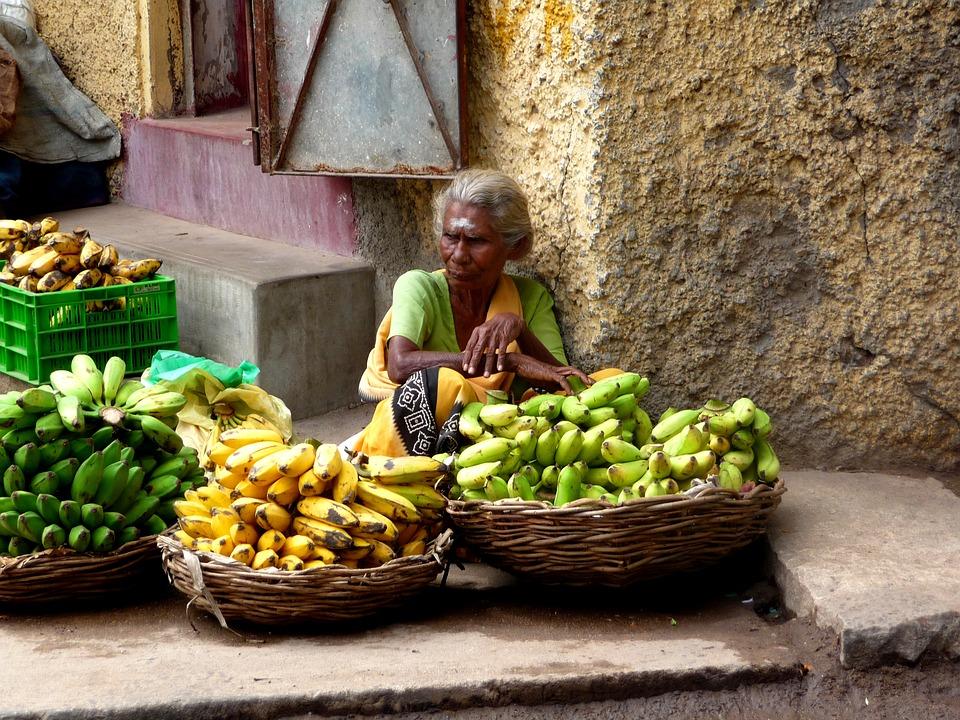india-1806514_960_720