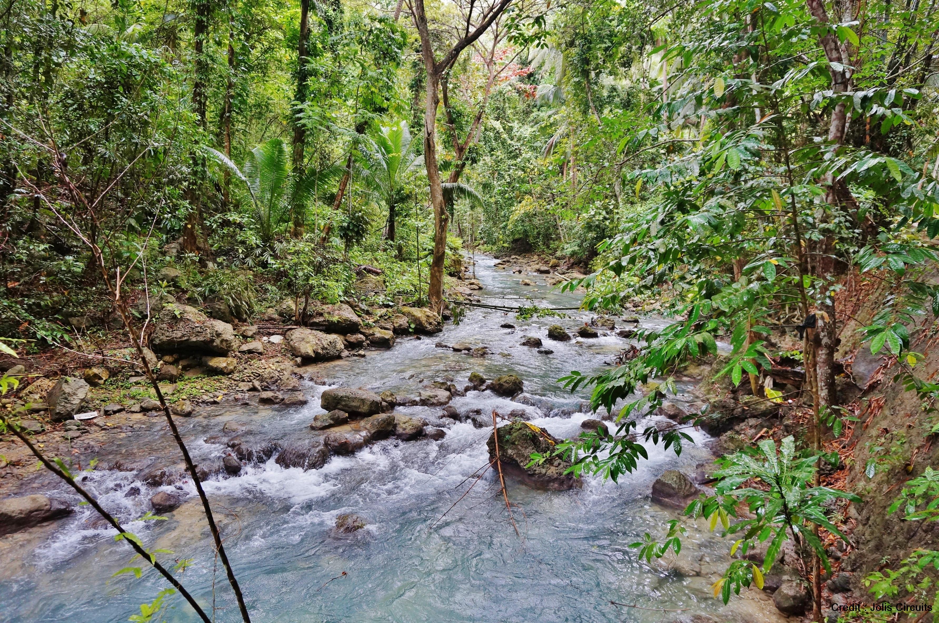 cascade de Kawasan Cebu philippines