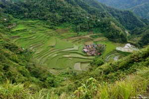 Rizières Bangaan Philippines
