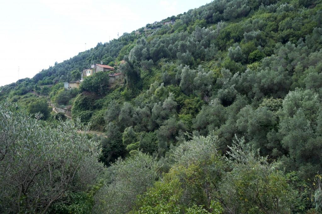 5 terre italie sentier parc naturel