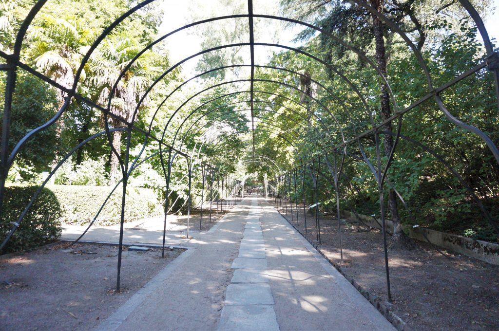 madrid espagne jardin botanique