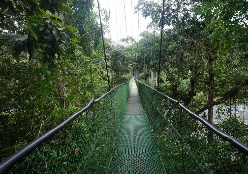 Reserva Biologica Tirimbina - Costa rica - Costa rica