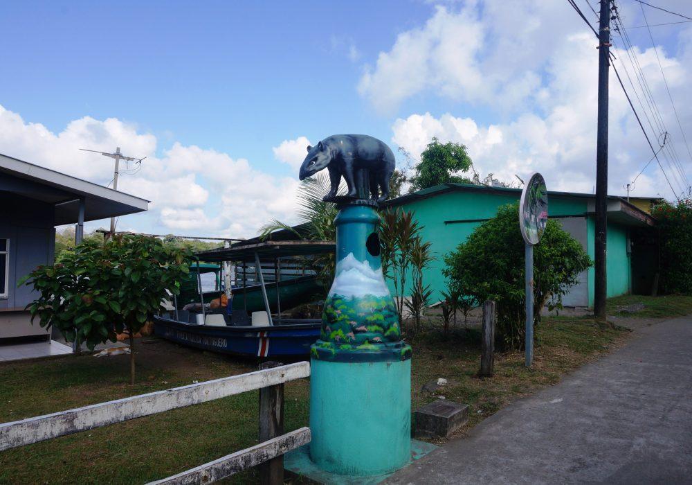 Village de Tortuguero - costa rica - poubelle animale