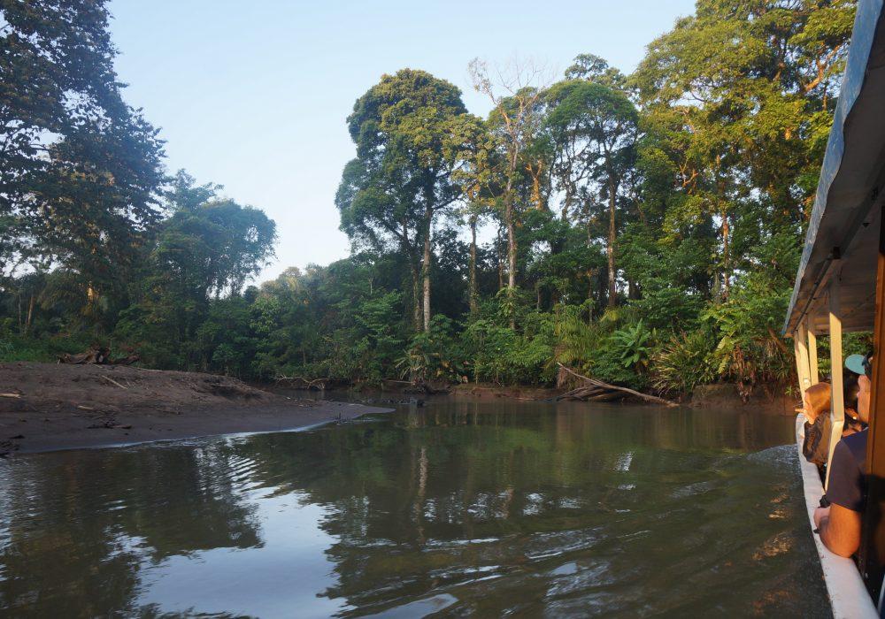 paysage tortuguero - costa rica - La pavona