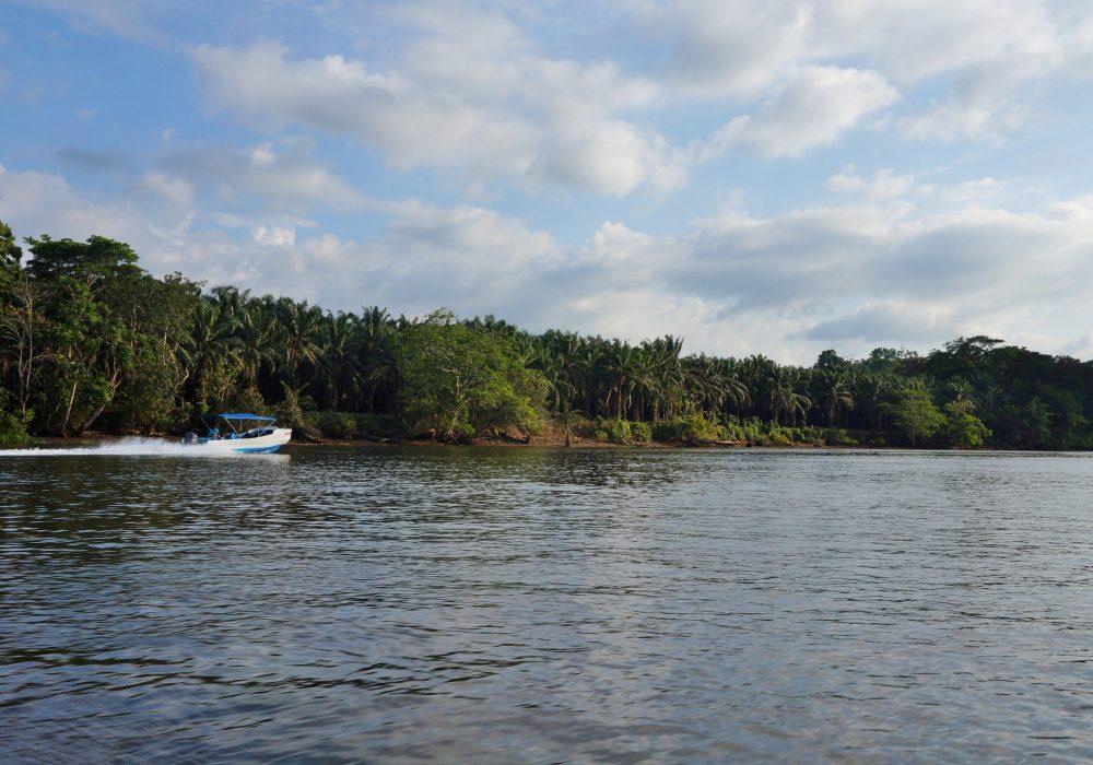 Bateau de Sierpe à Bahia Drake (péninsule d'Osa) - costa rica