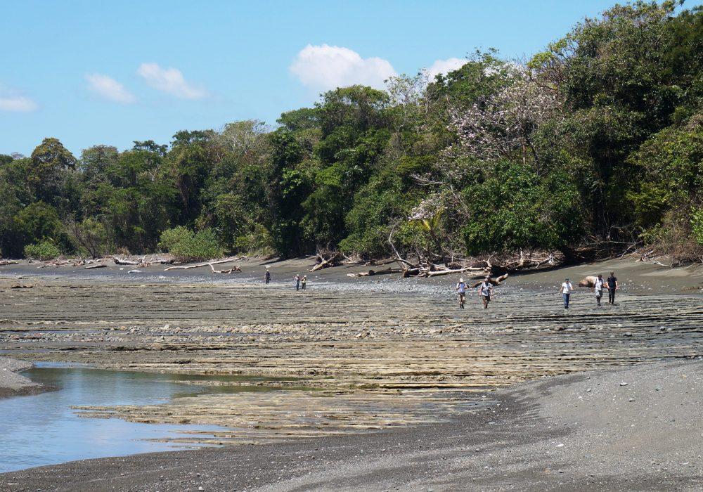 Plage - Parc national de Corcovado  - Costa rica