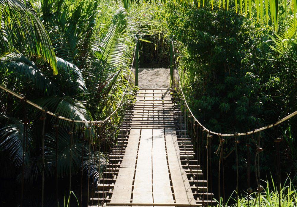 Pont suspendu -  Bahia Drake - péninsule d'Osa - Corcovado - Costa Rica