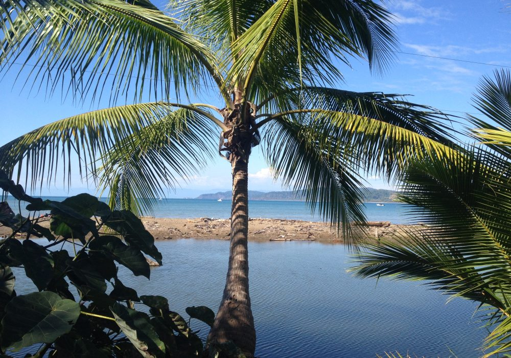 Bahia Drake - péninsule d'Osa - Corcovado - Costa Rica