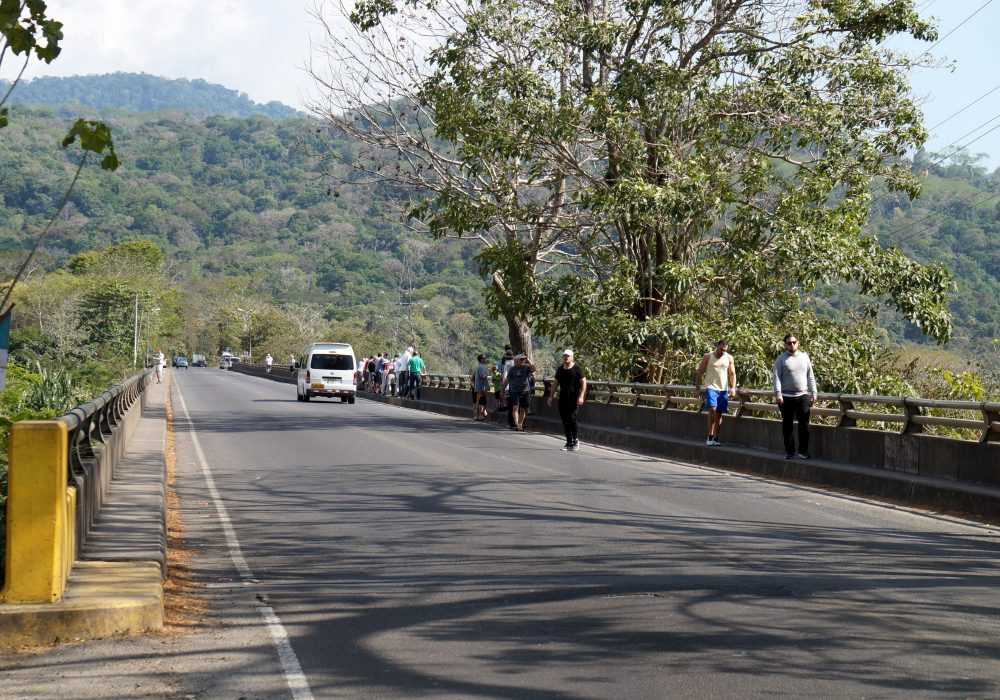 Pont des crocodiles -Tarcoles - Costa rica