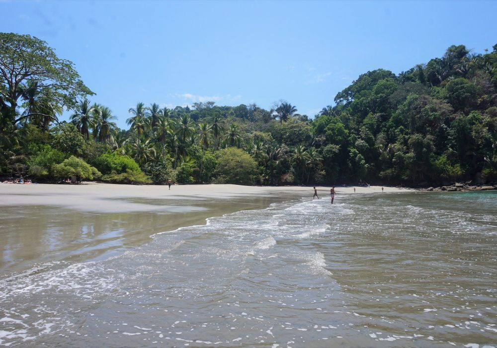 Plage du parc national Manuel Antonio - Costa rica