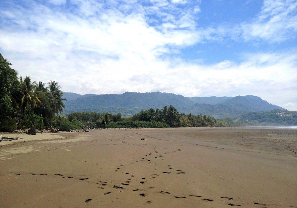 Plage du parc maritime Ballena - costa rica