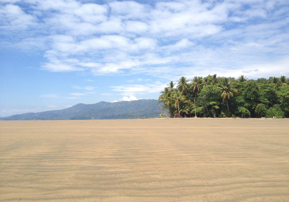 Plage du parc national maritime Ballena - Costa rica