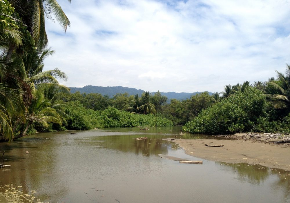 Parc maritime Ballena - Costa rica