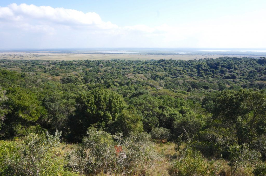 Mission Rocks, iSimangaliso Wetland Park, st lucia, afrique du sud