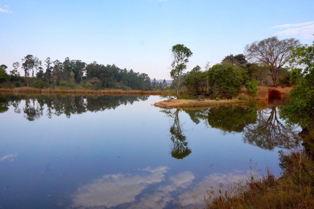 lac hippo, Mlilwane Wildlife Sanctuary, Swaziland