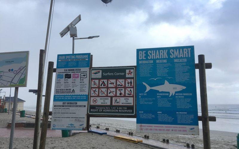 Panneau requin, Muizenberg beach, Cape Town, Afrique du Sud