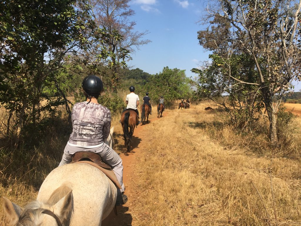 équitation, Mlilwane Wildlife Sanctuary, Swaziland