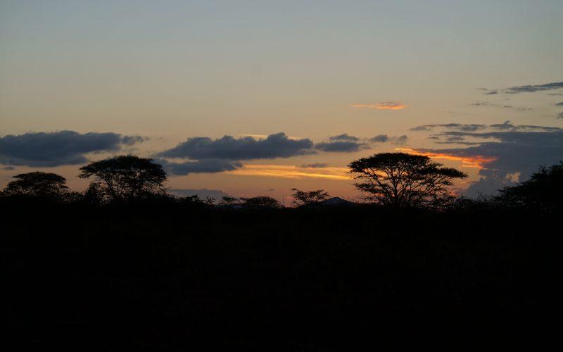 coucher de soleil, réserve zulu nyala, afrique du sud
