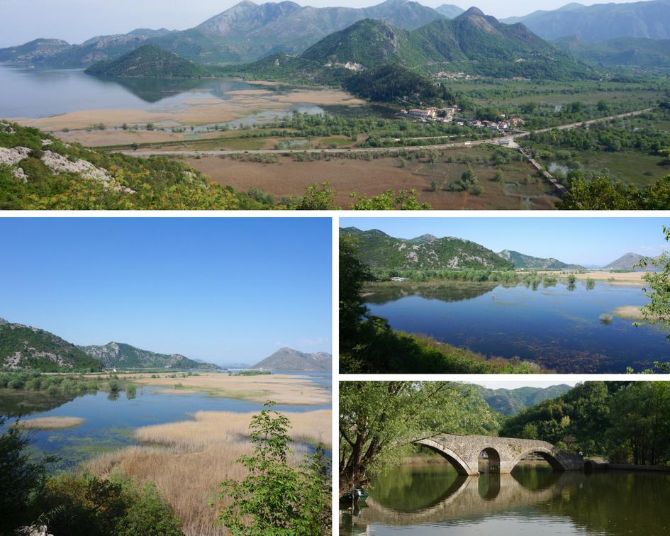 montenegro lac de skadar virpazar