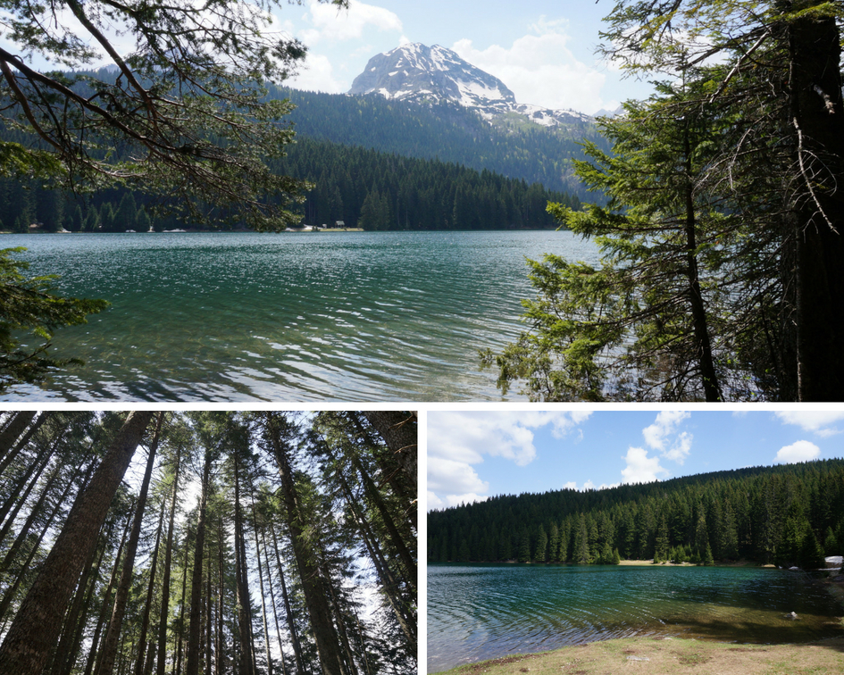 black lake montenegro parc national durmitor