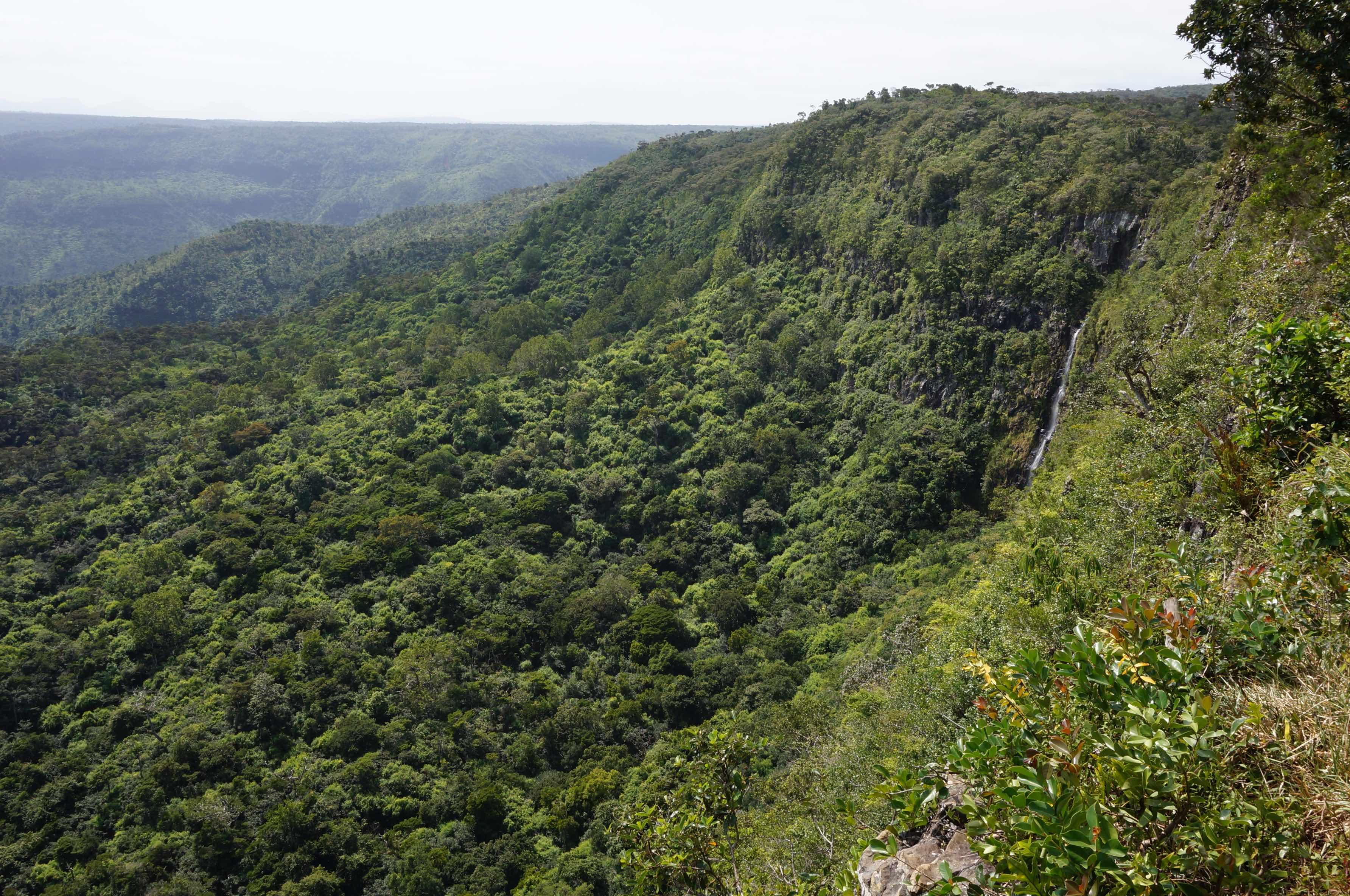 parc national des gorges de la rivière noire, île mauirice