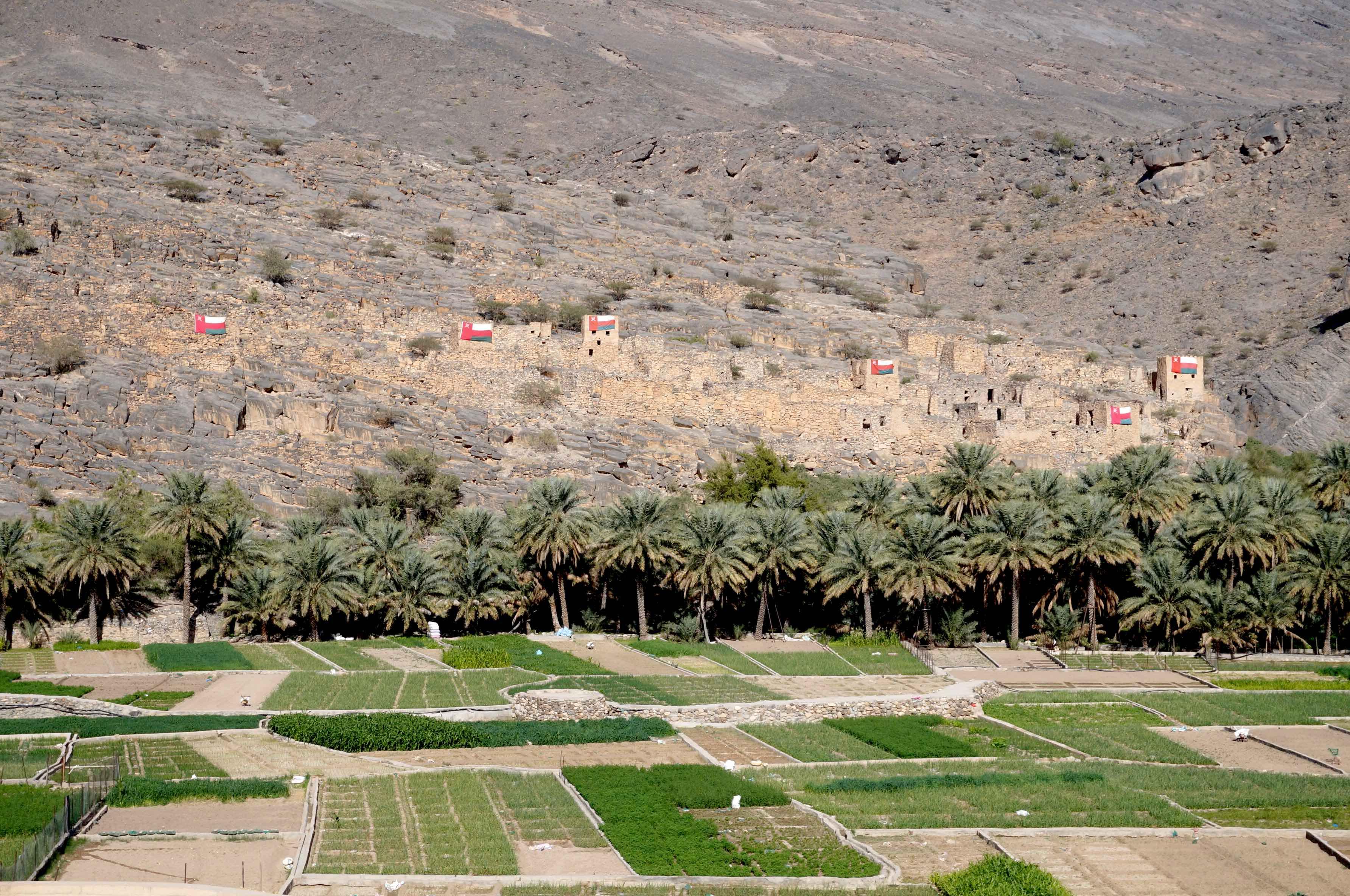 village abandonné, wadi gul, oman
