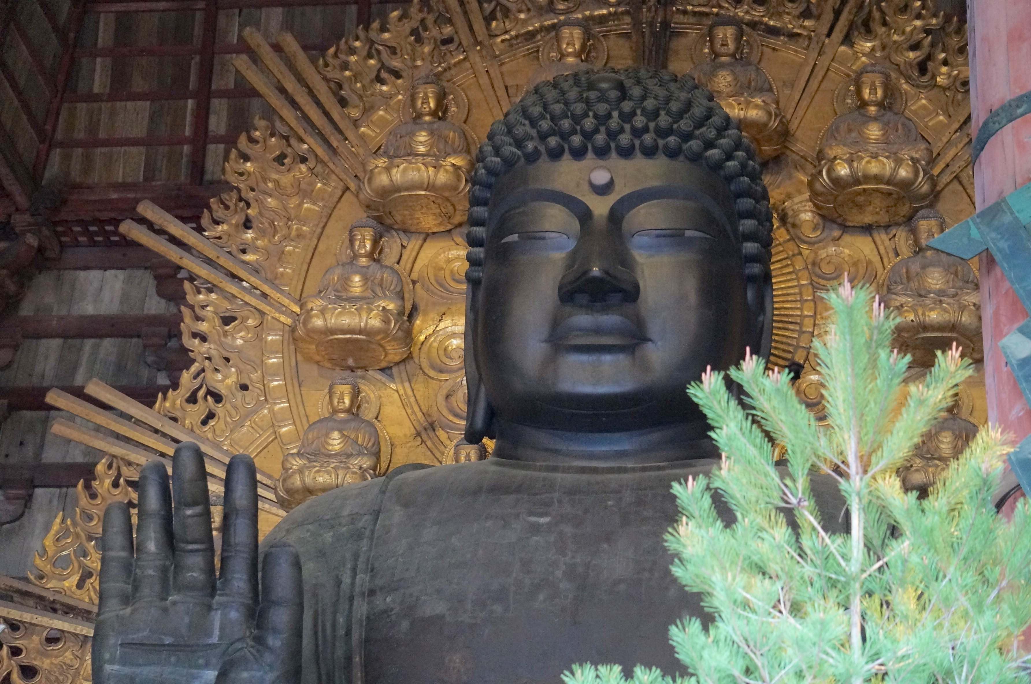 nara, japon, todai-ji, Grand bouddha, daibutsu