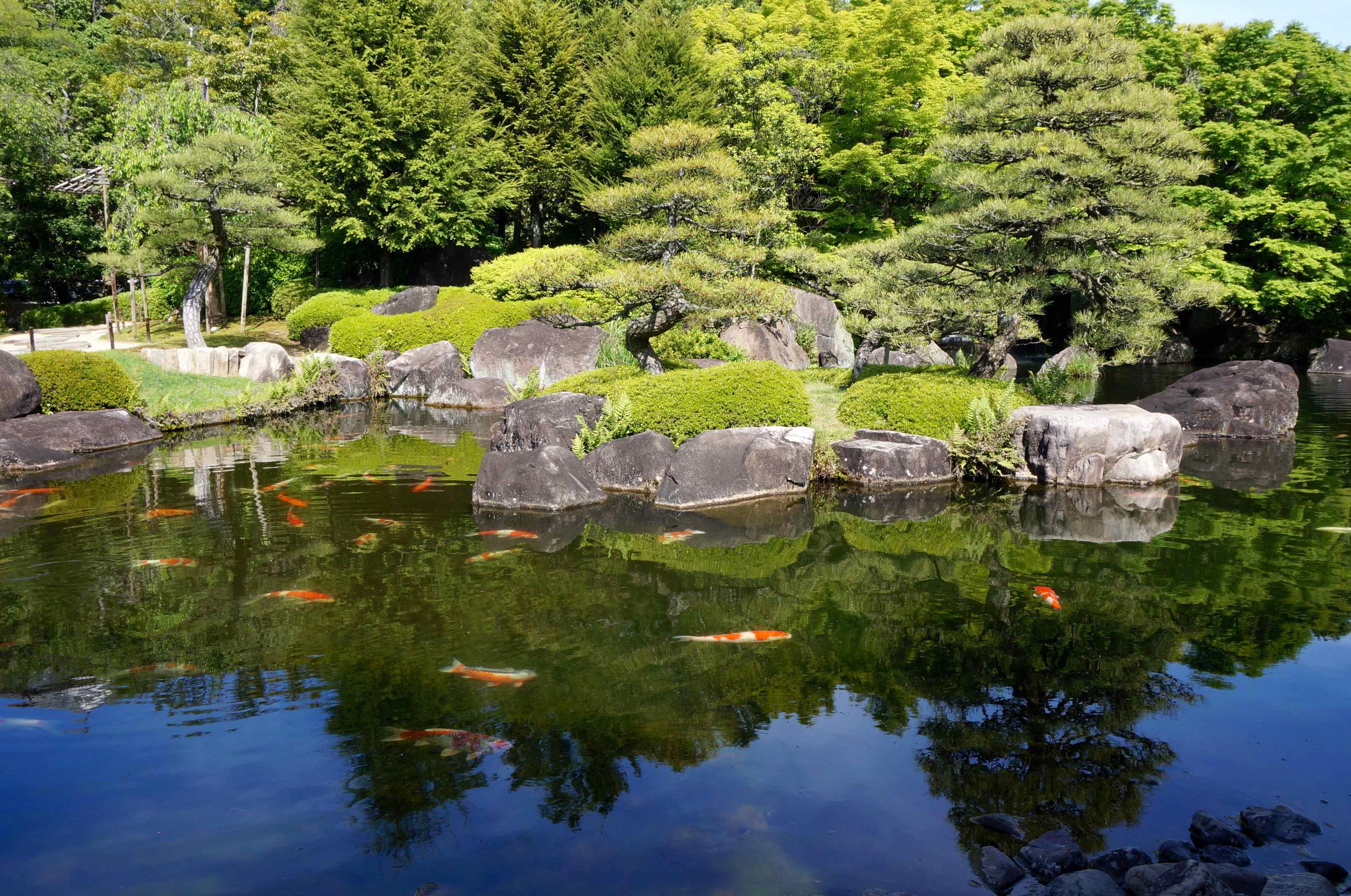 jardin koko-en, himeji, japon