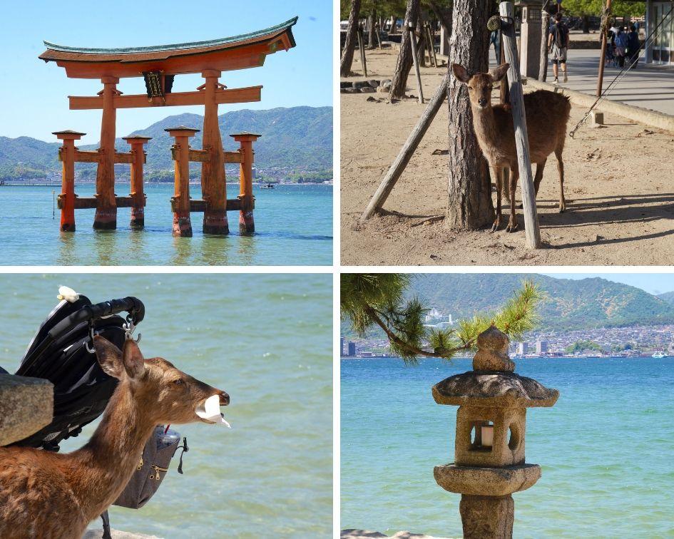 île de miyajima, japon, hiroshima
