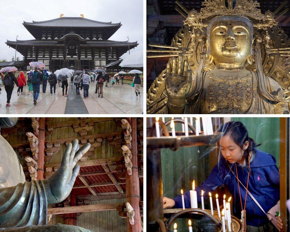 nara, japon, todai-ji, Grand bouddha, daibutsu-en