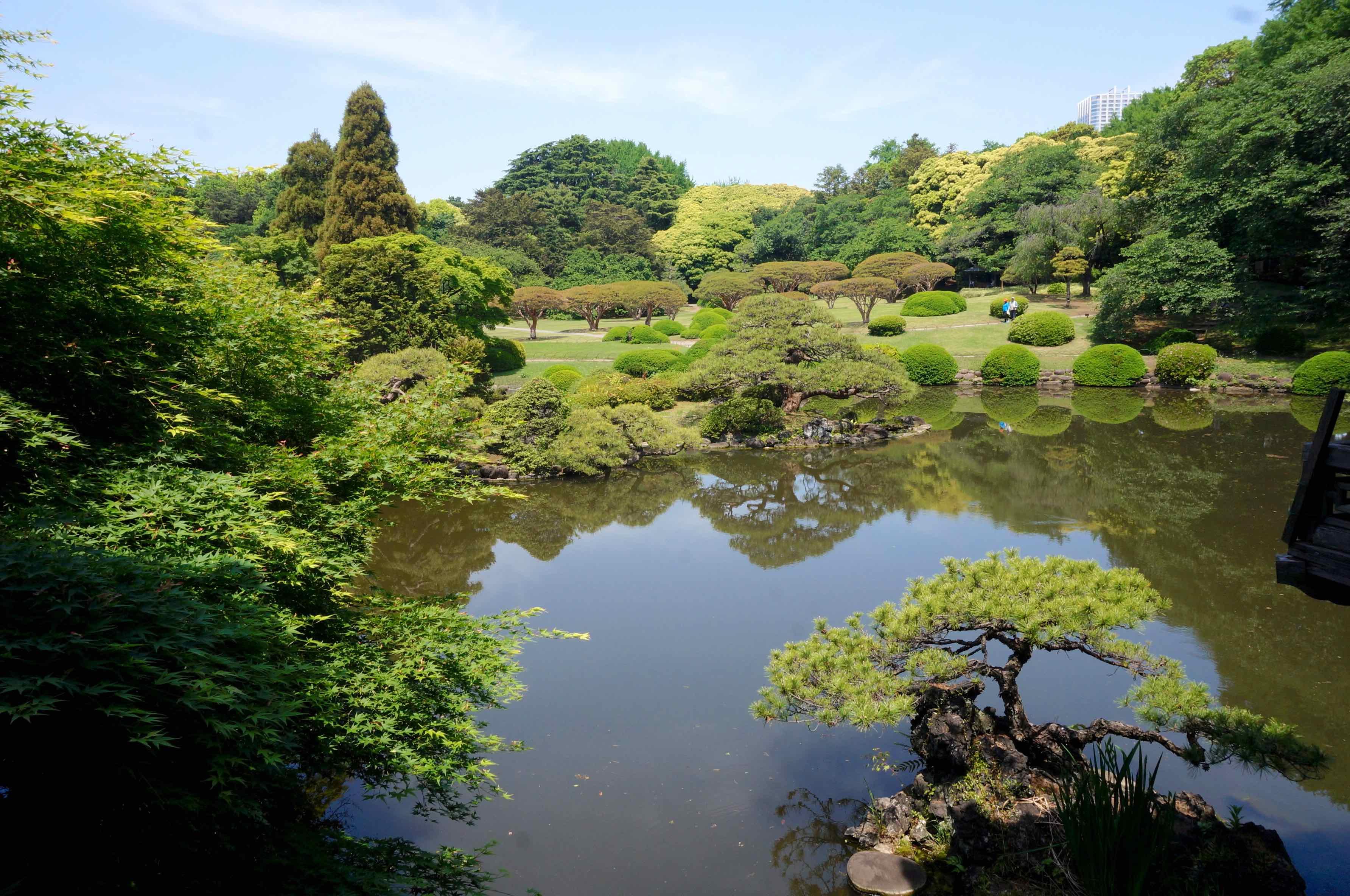 parc shinjuku gyoen, tokyo, japon