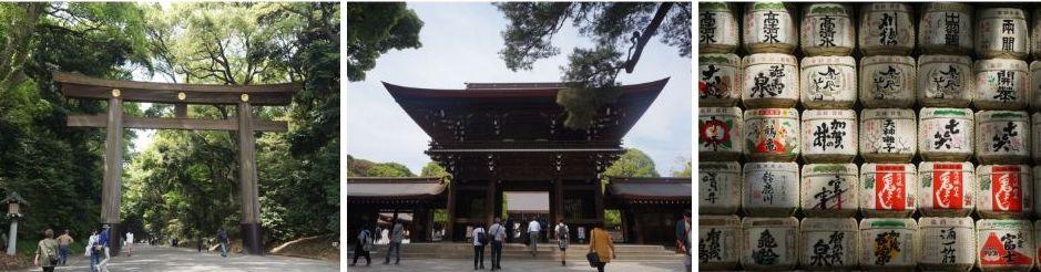 sanctuaire meiji jingu, tokyo, japon