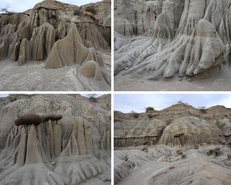 désert gris, los hoyos, desert de la tatacoa, colombie