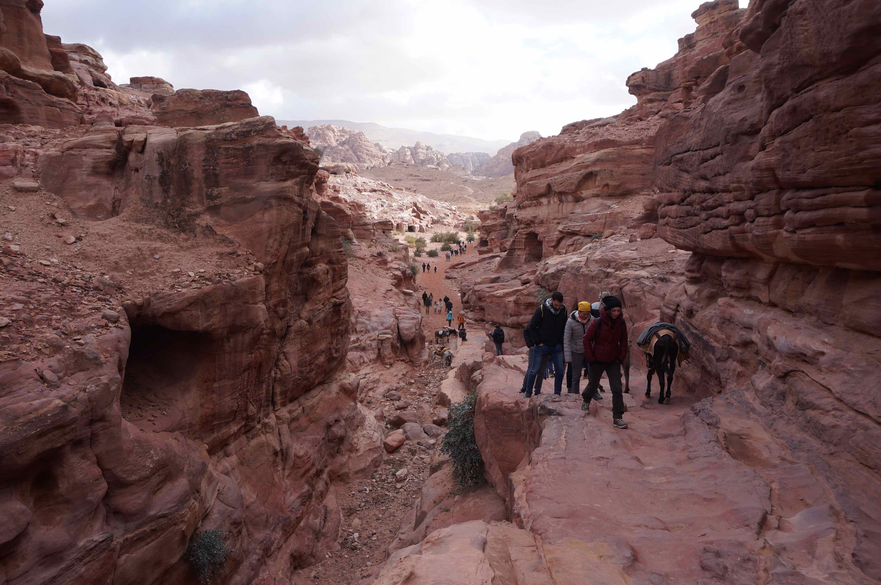 ad deir trail, jordanie, petra