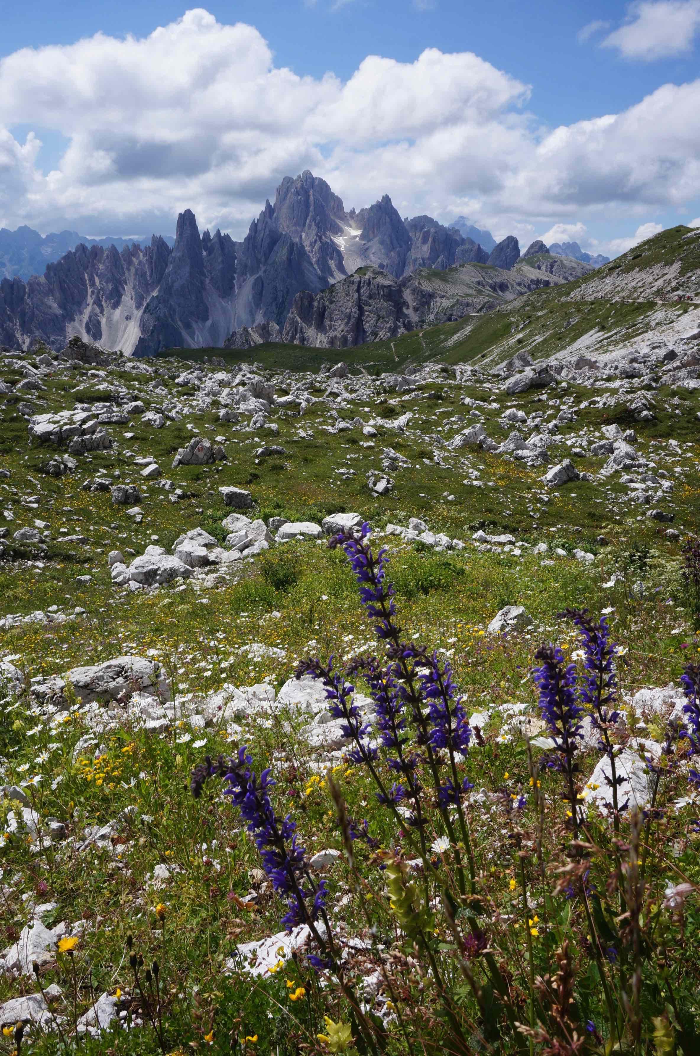 dolomites, Tre Cime Lavadero, italie